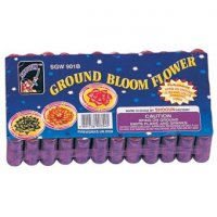 GROUND BLOOM FLOWERS - PACK OF 6